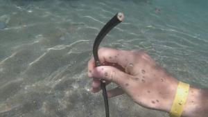 Kabel i havet