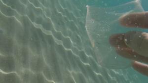 Plastmugg från turistbåt